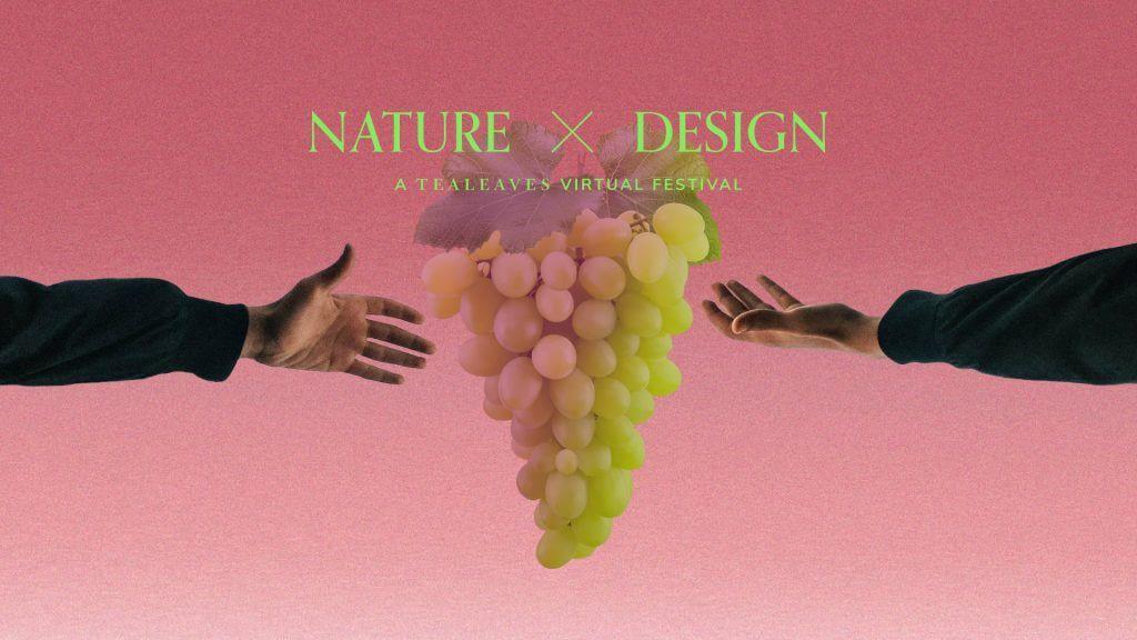 virtual event wine and tea tasting